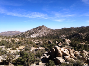 what to do in the Coachella Valley